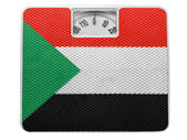 The Sudan flag — Stock Photo