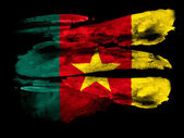 The Cameroonian flag — Stock fotografie