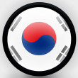 Stock Photo: South Koreflag