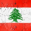 Lebanese flag — Stock Photo #23454024