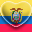 Ecuador flag — Stock Photo #23455216