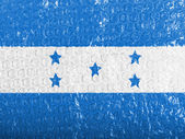 The Honduran flag — Stock fotografie