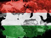 венгерский флаг — Стоковое фото