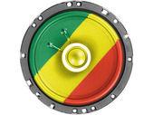 The Congo flag — Stock Photo