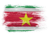 Surinamese flag on white background — Stock Photo
