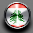Lebanese flag — Stock Photo #23460736