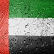 The UAE flag - Stock Photo