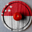Stock Photo: The Singapore flag