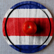 The Costa Rica flag — Photo