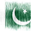 The Pakistani flag - Foto Stock