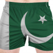 Pakistani flag — Stock Photo #23463048