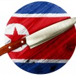 North Koreflag — Stock fotografie #23468180
