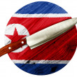 The North Korea flag — Foto Stock
