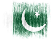 The Pakistani flag — Foto de Stock
