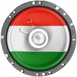 The Hungarian flag — Stock Photo #23477604