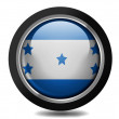 the honduran flag — Stock Photo #23481021