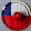 Chile flag — Stock Photo #23481137