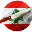 Lebanese flag — Stock Photo #23483077