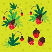 Strawberries. — Vetorial Stock