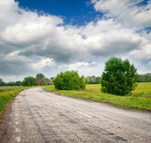 Road between the fields and the trees — Stock Photo