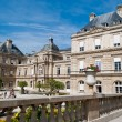 Luxembourg Palace and gardens, Paris — Stock Photo #12783101