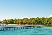Paradise Island, Green Island, Queensland, Australia — Stock Photo