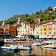Portofino, Liguria, Italy — Stock Photo #19908665