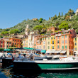 Portofino, Liguria, Italy — Stock Photo #19908809
