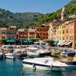 Portofino, Liguria, Italy — Stock Photo #19908879