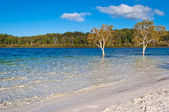 Lake McKenzie, Fraser Island — Stock Photo