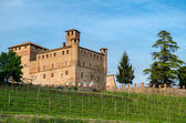 Castle of Grinzane Cavour, Piedmont, Italy — Stock Photo