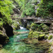 Vintgar Gorge, Slovenia — Stock Photo