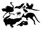 Animals-silhouettes — Stock Vector