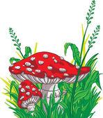 Cartoon style amanita mushrooms and grass — Stock Vector