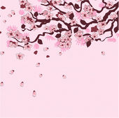 Sakura branch background — Stock Vector