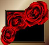 Róża w ramce — Wektor stockowy
