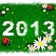 Happy new year 2013! Grass, flowers and ladybugs — Stock Vector