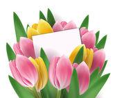 Modèle de conception de tulipes ou de fond — Vecteur