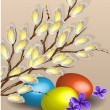 Pussy willow branches and easter eggs — Stock Vector