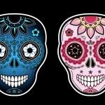 Two sugar skulls — Stock Vector #22300569