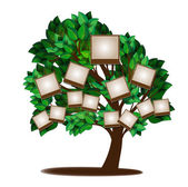 Family tree design template — Stock Vector