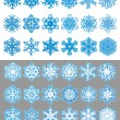 Snowflakes set — Stock Vector #29675821
