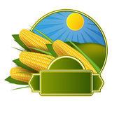 Corn cob label — Stock Vector