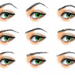 Stock Vector: Nine different eyebrows set