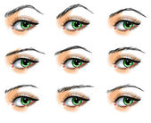 Nine different eyebrows set — Stock Vector