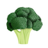 Realistic broccoli vector illustration — Stock Vector