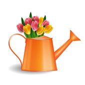 Watering can with bunch of tulips isolated on white — Stock Vector