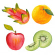 Apple, qiwi, orange and dragon fruit. Hand drawn in watercolor technique — Stock Vector #51518443