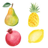 Pear, pinapple, pomegranate and lemon. Hand drawn in watercolor technique — Stock Vector