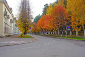 Autumn road — Stockfoto